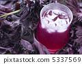 紅紫蘇汁 5337569