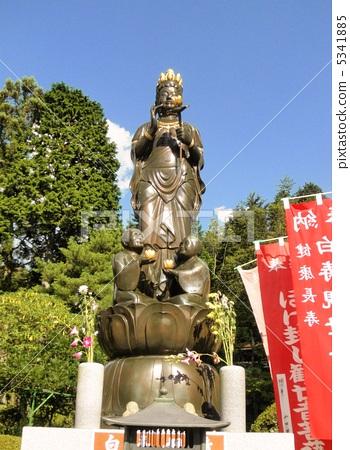 기후현 히다카 관음 백수 관음 보살상 The Statue of Hakujukannon 5341885