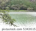池塘 鹹水湖 靜岡 5343615