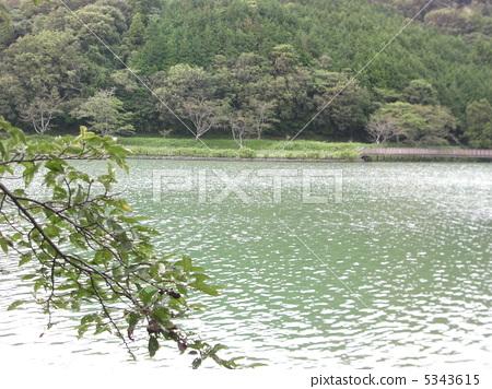 丹野 연못 5343615