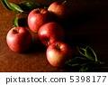 蘋果 5398177