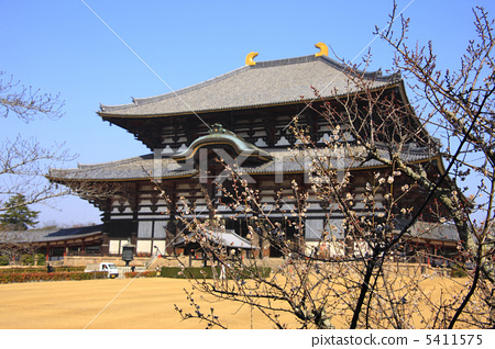 Todaiji Temple of Great Bodens 5411575