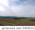 Field of Biei 5458503