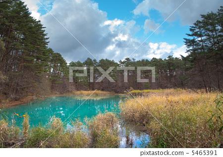 蓝色的湖水 五色沼 盘梯朝日国立公园 5465391
