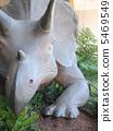 triceratops, dinosaur, brisbane 5469549