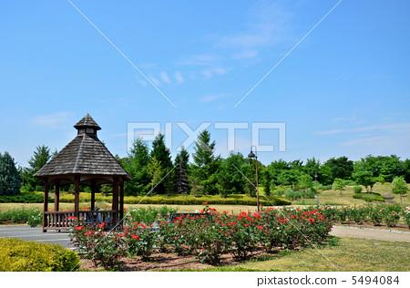 Makimi Hill Park 5494084