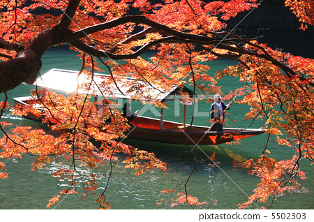 秋季葉子和遊艇在Arashiyama,京都 5502303