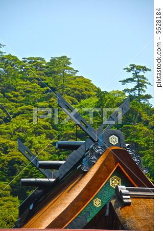 New roof of Izumo Taisha / Gohonden (chan-painted) (Taisha-cho, Izumo City, Shimane Prefecture) 5628184