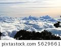 雲海 叢林 雲層之上 5629661