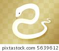 白蛇 蛇 大毒蛇 5639612