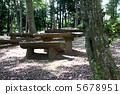 Wooden Bench 5678951