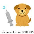 狗接种疫苗 5688285