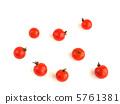 櫻桃番茄 5761381