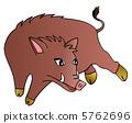 野豬野豬 5762696