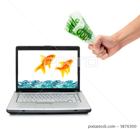 Goldfish 5876300