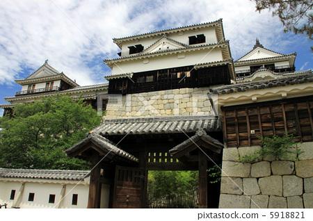 마쓰야마 성 5918821