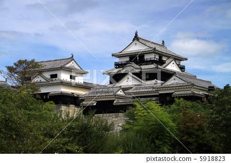 마쓰야마 성 5918823