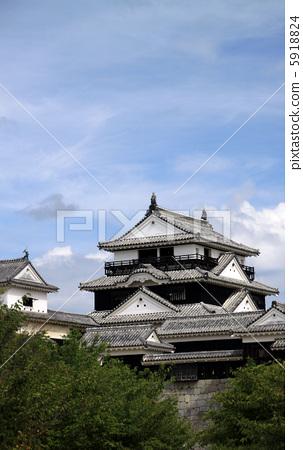 마쓰야마 성 5918824
