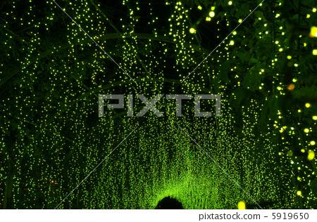 Christmas illumination 5919650