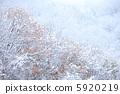 ฤดูกาลที่จะผ่าน - จากฤดูใบไม้ร่วงถึงฤดูหนาว - 5920219