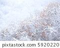 ฤดูกาลที่จะย้าย ~ จากฤดูใบไม้ร่วงถึงฤดูหนาว ~ 5920220