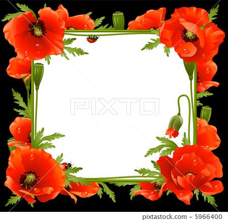 Poppy Floral Frame 5966400