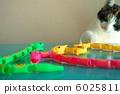 งู,ของเล่น,แมวคาลิโค 6025811