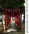 hanazono shrine, Torii Gate, shrine 6092055
