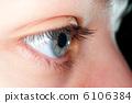 Blue eye closeup 6106384