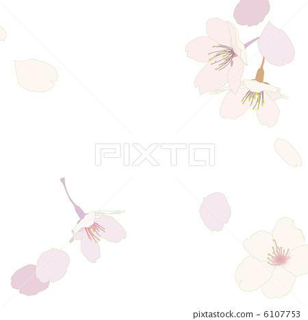 벚꽃 6107753