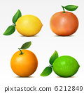 orange, lime, vector 6212849