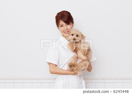 抱着动物医院护士 6245448