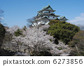 ดอกซากุระบาน,ซากุระบาน,ปราสาท 6273856