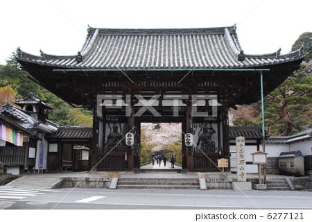 Ishiyama-ji的東大門和櫻花(埼玉朝聖13號門) 6277121