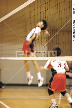 Stock Photo: volley ball, volley-ball, volleyball