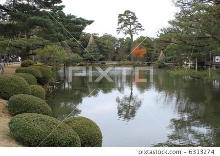 Kanrokuen, Kanazawa City, Ishikawa Prefecture 6313274