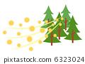 杉木花粉 树林 针叶林 6323024