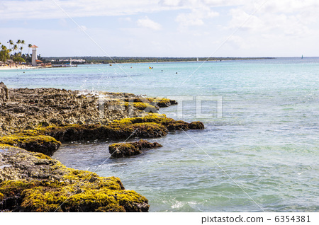 Caribbean  reef 6354381