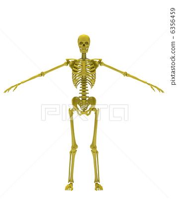 Skeleton Yellow 1 6356459