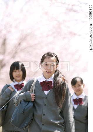 Junior high school students smiling in front of cherry blossoms 6390852