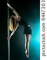 human pole dance 6447363