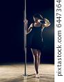 human pole dance 6447364