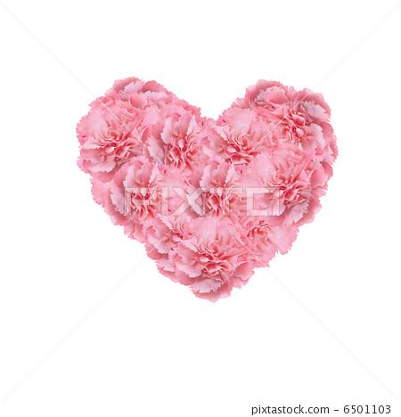心,粉紅色,康乃馨 6501103