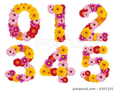 꽃의 숫자, 숫자, 번호, 꽃, 6501105