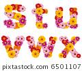 字母 花朵 花卉 6501107
