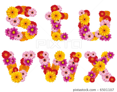 Flower lower case letters, alphabet, flowers, English, 6501107
