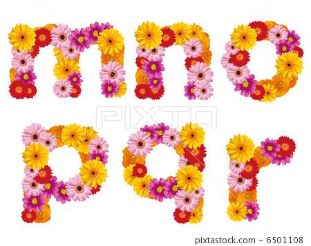 Flower lower case letters, alphabet, flowers, English, 6501108