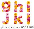 我 字母 花朵 6501109