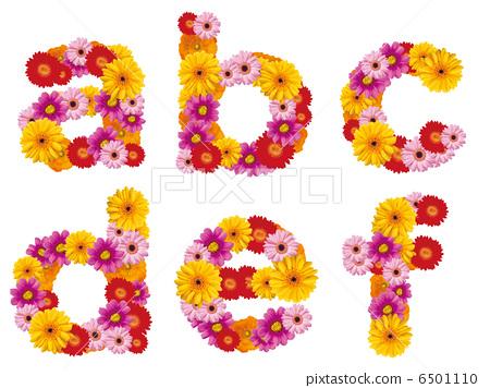 花小寫字母,字母,鮮花,英文, 6501110