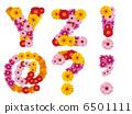字母 花朵 花卉 6501111